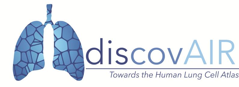 DiscovAIR logo